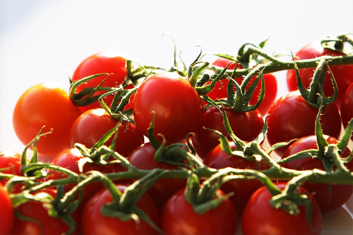 помидоры черри на ветке